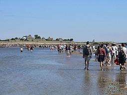 Normandie: Découvrez le cotentin ! (Et cotentin-webradio !) | Les news en normandie avec Cotentin-webradio | Scoop.it