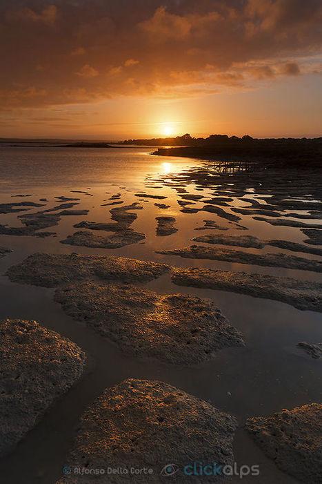 Low tide by Alfonso  Della Corte | My Photo | Scoop.it