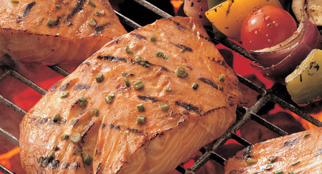 Honey Ginger Grilled Salmon Recipe | MakeYourRecipes | Recipes | Scoop.it