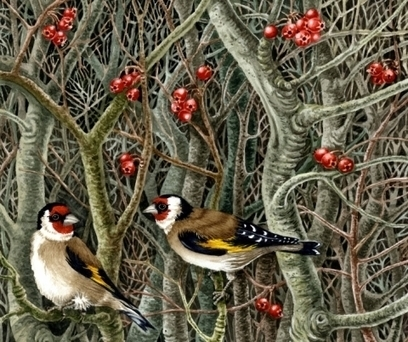Artwork: Goldfinches - Open House Art | Art - Crafts - Design | Scoop.it