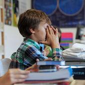 L'espoir d'une hausse du niveau des élèves en primaire s'éloigne | BeCom | Scoop.it