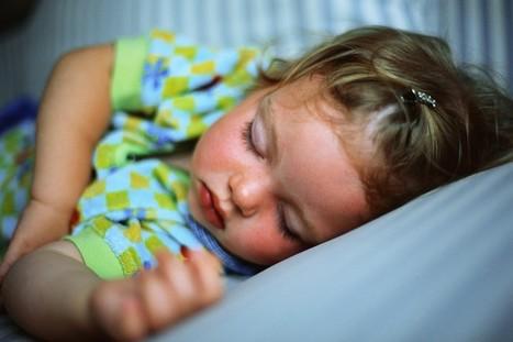 O sono influencia a memória? - Educador de Sucesso - Por Eliane S. Silva | Educação e Educadores | Scoop.it