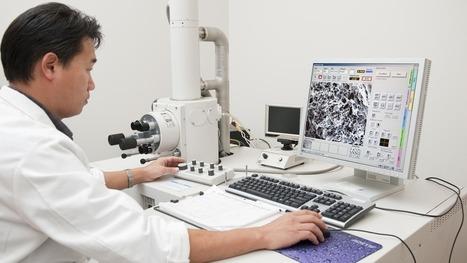 Latest Medical Breakthrough: A Lab-Grown Human Penis | Bioinformatics | Scoop.it