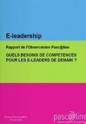 Les écoles d'ingénieurs forment-elles des e-leaders ? I Olivier Rollot | Entretiens Professionnels | Scoop.it