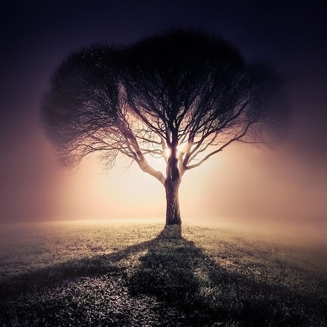 Mystical Foggy Photographic Scenes by Mikko Lagerstedt | Photography tips and tools | Scoop.it