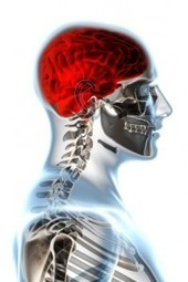 Human Body Meridians of Reiki | REIKI HEALING FOR BETTER HEALTH | Scoop.it