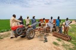 Kafo Jiginew et le monde agricole : 200 tracteurs mis à la disposition des paysans | Questions de développement ... | Scoop.it