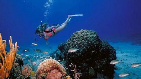 3 of the best travel destinations in US Virgin Islands | Exotic Virgin Islands | Scoop.it