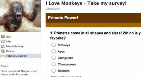 Facebook App of the Week: Engaging Your Fans with Survey Monkey - CMSWire | Facebook Marketing All News | Scoop.it