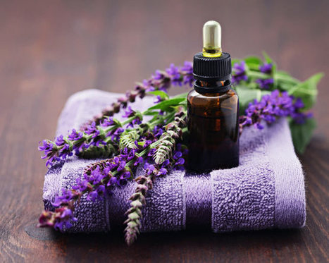 6 Scents That Have the Power to Heal | Aromatherapy & Therapeutic Essential Oils | Scoop.it