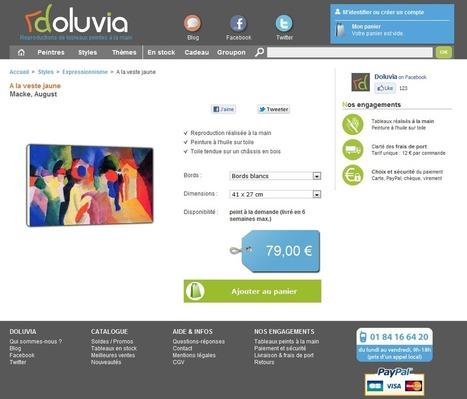 Interview de Dominique Vitali, fondateur de Doluvia | Actualité de l'E-COMMERCE et du M-COMMERCE | Scoop.it