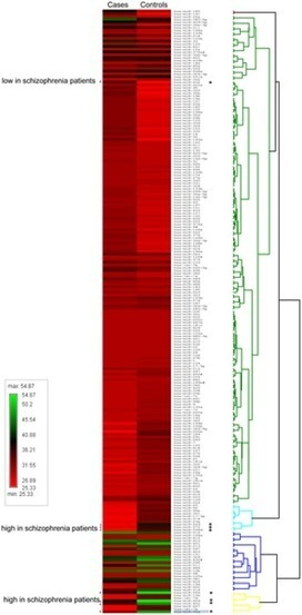 MicroRNA Aberration as Potential Peripheral Blood Biomarkers for Schizophrenia and Alzheimer   Amazing Science   Scoop.it