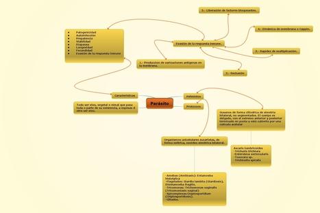 Parásitos. | Mecanismos de evasión inmune utilizados por los parásitos. LILIANA LUNA. ENEO-UNAM 2204 Con la asesoría de Victor Valverde. | Scoop.it