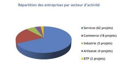 Développement économique : 2013, un bon cru pour Nantes métropole développement | API - E-lettre du 06/02/14 | Promotion économique des territoires et prospection d'entreprises | Scoop.it
