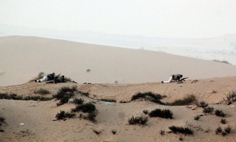 Le Sinaï, voie sans issue pour les migrants africains | Égypt-actus | Scoop.it