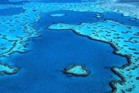 About the Reef - What is Australia's Great Barrier Reef | Great Barrier Reef | Scoop.it