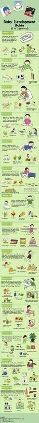 Baby Development Guide   TALC Infographics   Scoop.it