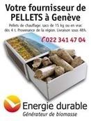 Valorisation déchets   Genève durable   Scoop.it
