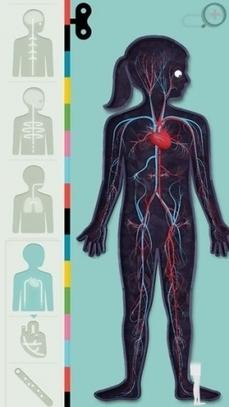 App Noot Muis: de beste apps over het menselijk lichaam | Mijn Kind Online | ICT kleuterklas | Scoop.it