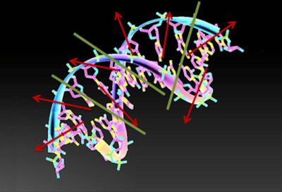 'Superinformation,' Helps Unravel DNA's GeneticCode. | DigitAG& journal | Scoop.it