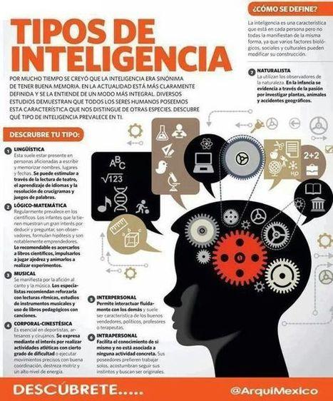 Tipos de Inteligencia – Definición y Características   Infografía   Elearning   Scoop.it