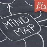 Révision du bac: apprendre plus vite avec le mind mapping | Insolite | Scoop.it