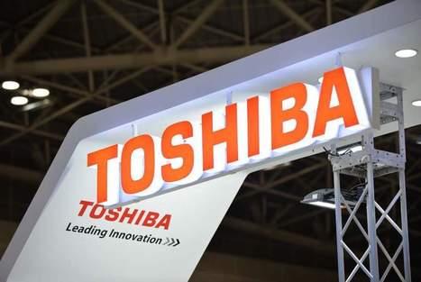 GE ne cédera pas l'activité Grid d'Alstom à Toshiba | Veille Actualité | Scoop.it