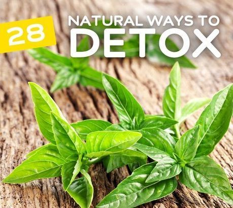 28 Simple & Natural Ways to Detox your Body | Belize Food | Scoop.it