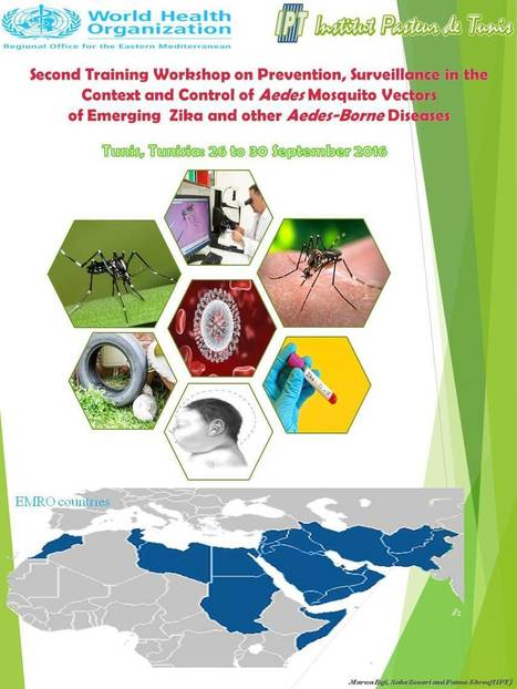 2ème Workshop sur la la surveillance de l'introduction du virus Zika dans les pays de la région EMRO | Institut Pasteur de Tunis-معهد باستور تونس | Scoop.it