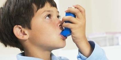 la comida rápida puede aumentar el riesgo de contraer asma en los niños - alsalirdelcole | Noticias - ASDC | Scoop.it