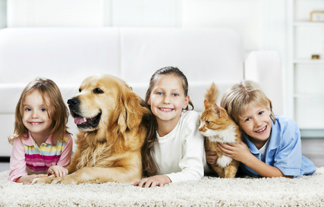 Exploring the Advantages of Professional Carpet Cleaning - Sherlocks.com.au Blog | Cleaning your home | Scoop.it