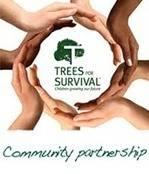 Trees for Survival | Changes of Environment to Meet Needs and Wants | Scoop.it