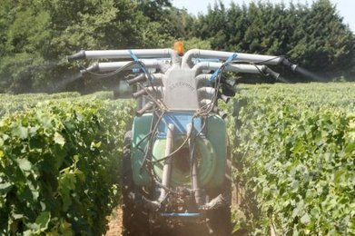Cancers dans le monde agricole : « on sous-estime l'impact des pesticides » | Toxique, soyons vigilant ! | Scoop.it
