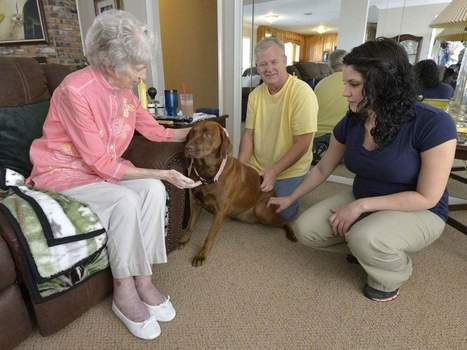 Pet Peace of Mind: Program Takes Care of Hospice Patients' Pets | Pet News | Scoop.it
