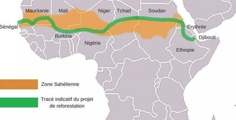 [FR] The Great Green Wall half-finished #Eritrea #Ethiopia #Djibouti #Horn2025 Ecofin 14/10/16 | Horn Ethiopia Economy Business | Scoop.it