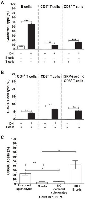 Rotavirus Activates Lymphocytes from Non-Obese Diabetic Mice by Triggering Toll-Like Receptor 7 Signaling and Interferon Production in Plasmacytoid Dendritic Cells | Viruses and Bioinformatics from Virology.uvic.ca | Scoop.it