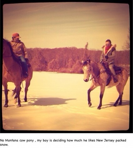 Winter horses and thank you's - Bruce Springsteen Official Site | Bruce Springsteen | Scoop.it