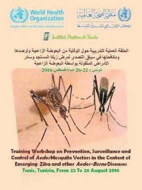 Workshop sur la la surveillance de l'introduction du virus Zika dans les pays de la région EMRO   EntomoNews   Scoop.it