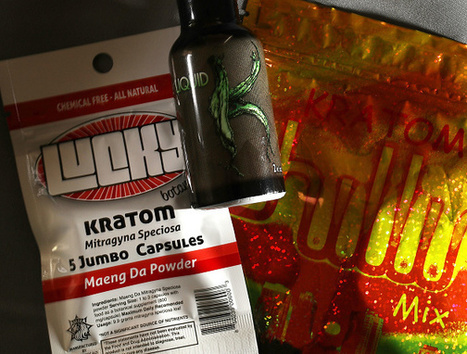 What is Kratom and why won't the FDA approve it as medicine? | Erba Volant - Applied Plant Science | Scoop.it