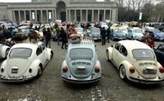 Février, le mois de la coccinelle | Volkswagen Beetle | Scoop.it