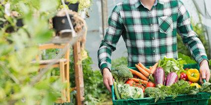 Open Food France, plateforme pour une alimentation durable - Le Labo de l'économie sociale et solidaire | Consommation Responsable | Scoop.it