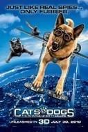Watch Cats & Dogs: The Revenge of Kitty Galore Online - at MovieTv4U.com | MovieTv4U.com - Watch Movies Free Online | Scoop.it