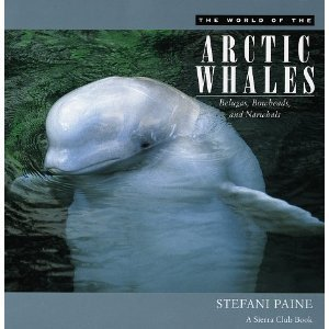 Amazon.com: The World of the Arctic Whales: Belugas, Bowheads, and Narwhals: Stefani Paine: 洋書 | Inuit Nunangat Stories | Scoop.it
