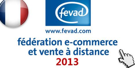 El Comercio electrónico en Francia en 2013 | Comercio Electrónico | Scoop.it