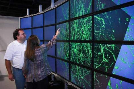 Creating a 3D Map of the Brain | Neuroscience News | Brain Imaging and Neuroscience: The Good, The Bad, & The Ugly | Scoop.it