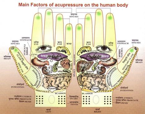HAND REFLEXOLOGY CHARTS - Tips for recognizing a good reflexology hand chart! | Medical Marijuana and Alzheimer's | Scoop.it