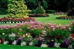 Unique Ideas for a Beautiful Landscape | Real Estate | Scoop.it