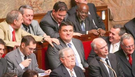Le nid Douillet des sénateurs de l'étranger | Du bout du monde au coin de la rue | Scoop.it