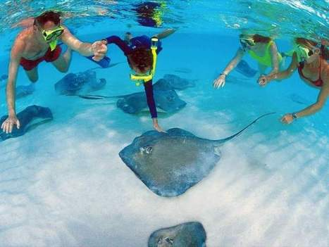 Travel Deals Heat Up This Time of Year for Families - The Ledger | St Thomas Boat Rental | Scoop.it