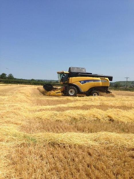 Combine is rolling - Winter barley harvested in Somerset | UK #harvest13 | Scoop.it